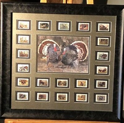 "National Wild Turkey Federation ""NWTF"" stamps/print 1992-2012 AND FREE KNIFE!!!"