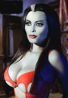 The Munsters Lily Munster Sexy 60'S TV Herman Bumper Sticker or Fridge Magnet