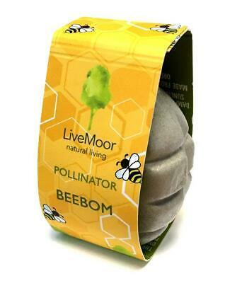 LiveMoor - Bee Bomb - Pollinator Seed Bom - Join the fight to save the bees!