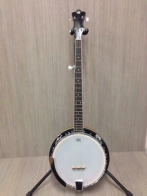 VGS  BJ-005 5-String Banjo Gig Bag Clearance Sale