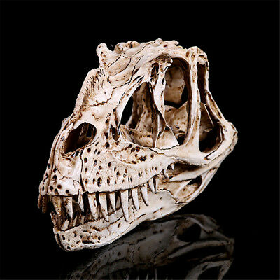 Horrible Ceratosaurus Dinosaur Head Skull Fossil Halloween Resin Ornaments Decor
