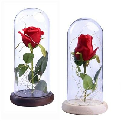 Red Rose in a Glass Dome w/A Wooden Base Wedding Anniversary Birthday Decor Gift