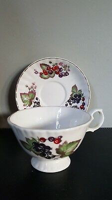 Vintage Eyebrow Cottage Berries Pattern Tea Cup and Saucer