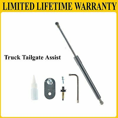 Truck Tailgate Assist Shock Lift Support DZ43203 For 99-16 Ford F150 Super Duty