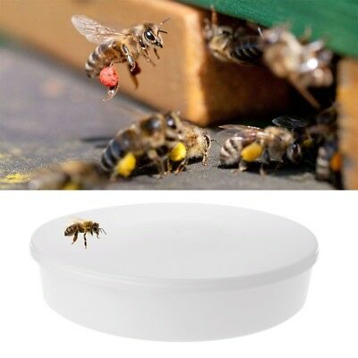 Beekeeping Equipment Bee Water Feeder Beehive Drinking Feeding Bowl Supplies
