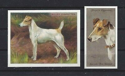 1915 - 1940 UK Reissue Reproduction Dog Art Cigarette Card x2 SMOOTH FOX TERRIER