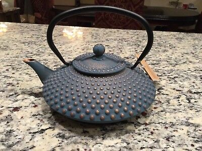 Cast Metal Tea Pot Kettle Asian Green with Gold dots, includes tea basket