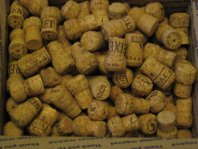 250 Natural Used CHAMPAGNE Sparkling Wine Corks