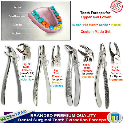 Surgical Tooth Forceps Upper-Lower Molars Canines Root Extraction Set Pinza 4PCS