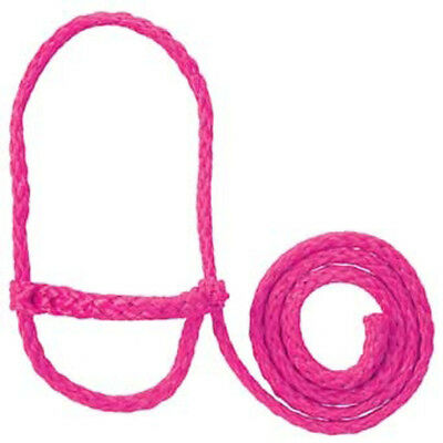 Sheep Lamb and Goat Adjustable Halter with Rope Lead PINK Showing Sheep