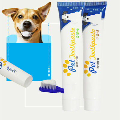 Edible Dog Puppy Cat Toothpaste Teeth Cleaning Oral Care Pet Supplies Flowery