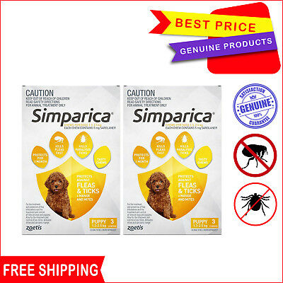 SIMPARICA 6 Chews Yellow for Dogs 1.3 to 2.5 Kg Flea and Tick Prevention