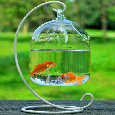 C0E6 Hanging Transparent Glass Vases Fishbowl Fish Tanks Aquarium Decoration