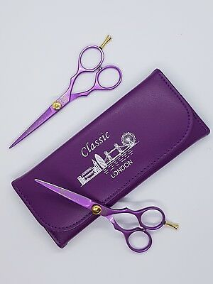 CLASSIC professional hairdressing &  hair cutting barber scissor saline shear