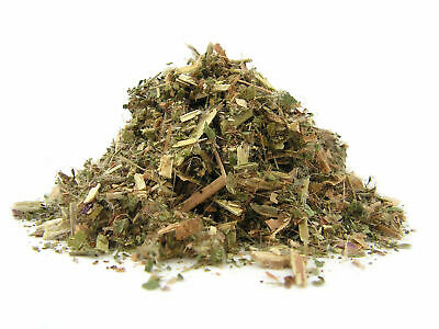 Tea Willowherb Epilobium Parviflorum Smallflower - For Urinary Prostate