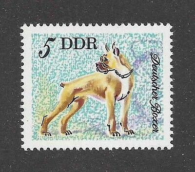 Dog Art Full Body Portrait Postage Stamp Cropped BOXER East Germany DDR 1976 MNH