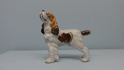 Old Spain Brittany Spaniel Dog Very Detailed with 3 Leaf Clover Mark