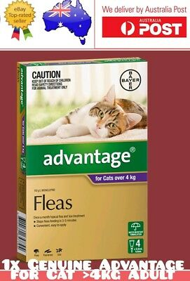 1x Advantage For Cats Over 4kg ORIGINAL Flea Spot On SINGLE