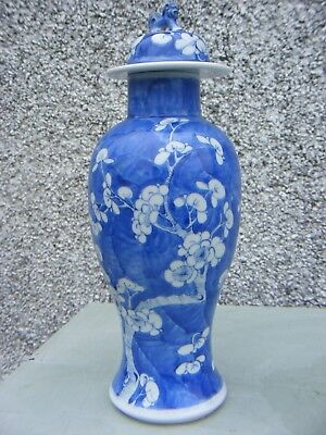 Antique Chinese Kangxi Prunus Blossom Lidded Vase Jar  Four Character Mark
