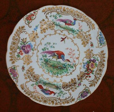 """Fine Hand Painted Dinner Plate 19th Century Booth's """"Chelsea Birds"""" Exotic Birds"""