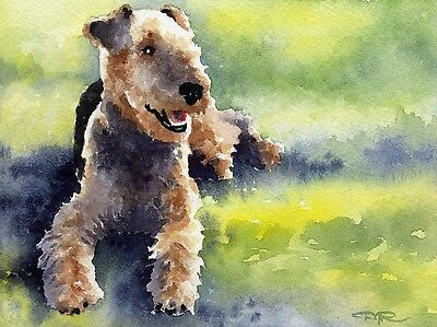 AIREDALE TERRIER Watercolor 8 x 10 DOG ART Print Signed DJR