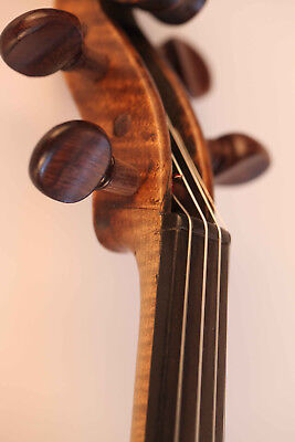 alte geige label Rota 1799 violon old italian violin cello viola 小提琴 ヴァイオリン