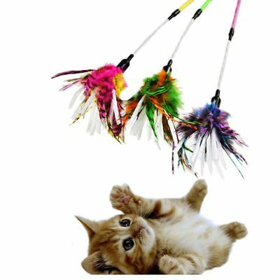 Pet Cat Dog Feather Toy Wire Stick Toy Attract Kitten Teaser Wand Interactive