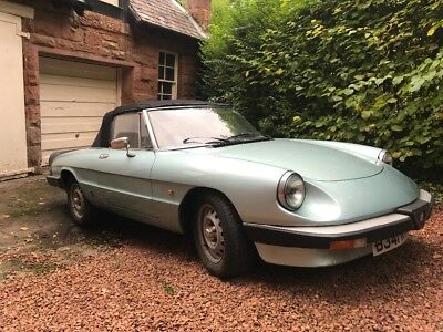 Alfa Romeo Spider, No Reserve Auction