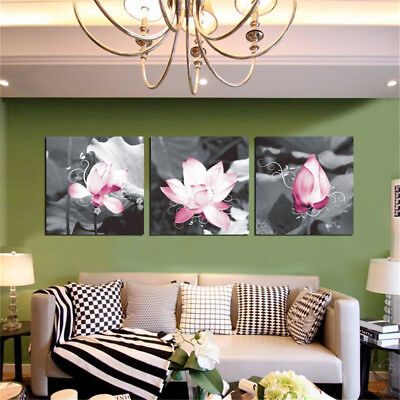 HK- 3Pcs Beautiful Lotus Flowers Picture Wall Painting Poster Art Home Decor Eye