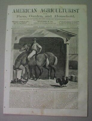 1868 cover print: PERCHERON HORSES - draft horse