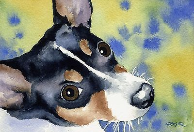 RAT TERRIER Watercolor Painting Dog 8 x 10 ART Print Signed by Artist DJR