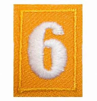 Girl Scout yellow Daisy number 6/9 patch **NEW**