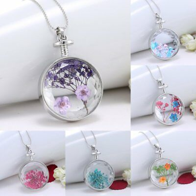 Round Glass Real Dried Flower Pendant Necklace Silver Sweater Chain Jewellery