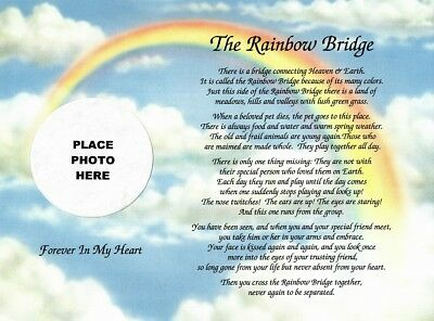 In Memory of Your Pet .. The Rainbow Bridge Memorial Poem Gift for Loss of a Dog