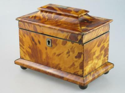 Antique 19th Century Faux Tortoiseshell Tea Caddy Circa 1820
