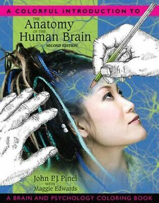 NEW A Colorful Introduction to the Anatomy of the Human Brain By John P.J. Pinel