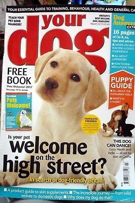 your dog magazine March 2013