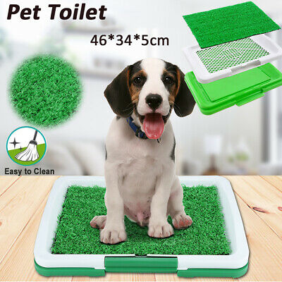 Puppy Pet Potty Training Pee Indoor Restroom Toilet Dog Grass Pad Mat Turf Patch