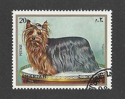 Dog Art Full Body Study Portrait Postage Stamp YORKSHIRE TERRIER Sharjah CTO