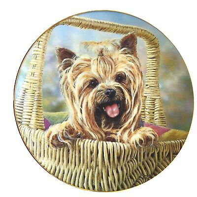 Danbury Mint Yorkshire Terrier Decorative Plate Limited Edition Signed Numbered