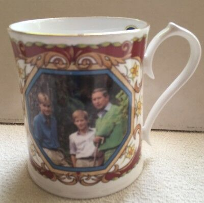 Prince Charles, William, Harry Mug For Charles's 50th