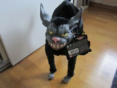 Halloween Katze Scary Animals Eur 15 00 Picclick De