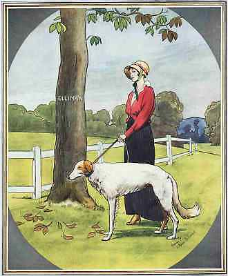 A YOUNG LADY& HER BORZOI (WOLFHOUND) Beautiful Century-Old Lithograph (original)