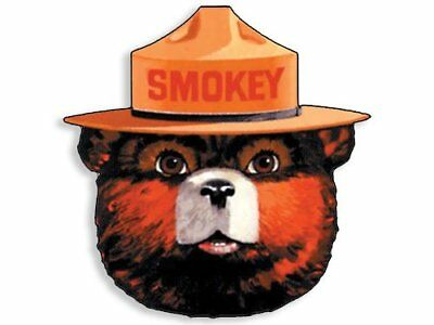 4x4 inch Full Color SMOKEY THE BEAR Face Shaped Sticker - forestry help prevent