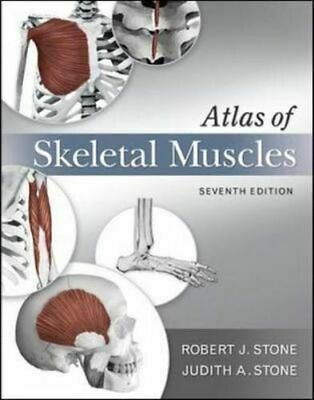 NEW Atlas of Skeletal Muscles By Judith Stone Paperback Free Shipping