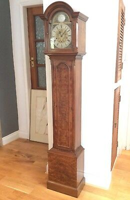 Stunning Burr Walnut Grandmother clock, lovely Westminster Chimes