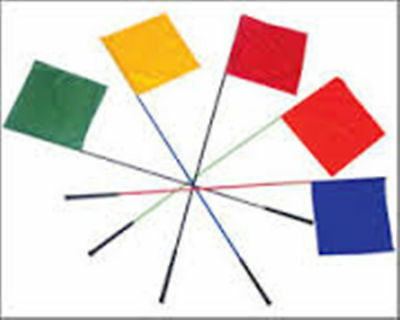 """KOEHN Whip Flag with Golf Grip 60"""" Assorted Colors Sorting Livestock"""