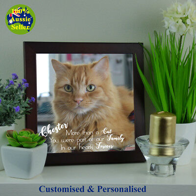 Memorial Photo Plaque for Cat Pets. Personalised. Ceramic Durable Quality Finish