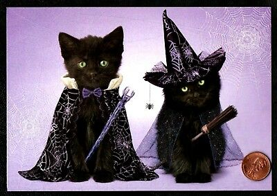 Halloween Black Cats Kittens Dracula Witch Costume GLITTER - Greeting Card - NEW