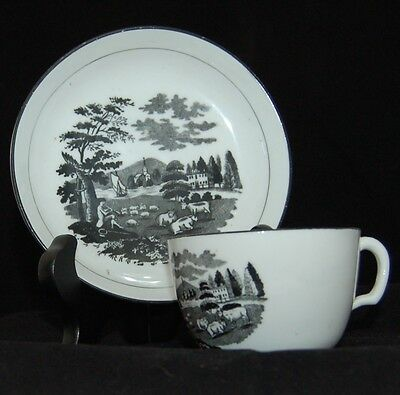 Early 19Th Century Transferware English Soft Paste Porcelain Cup & Saucer